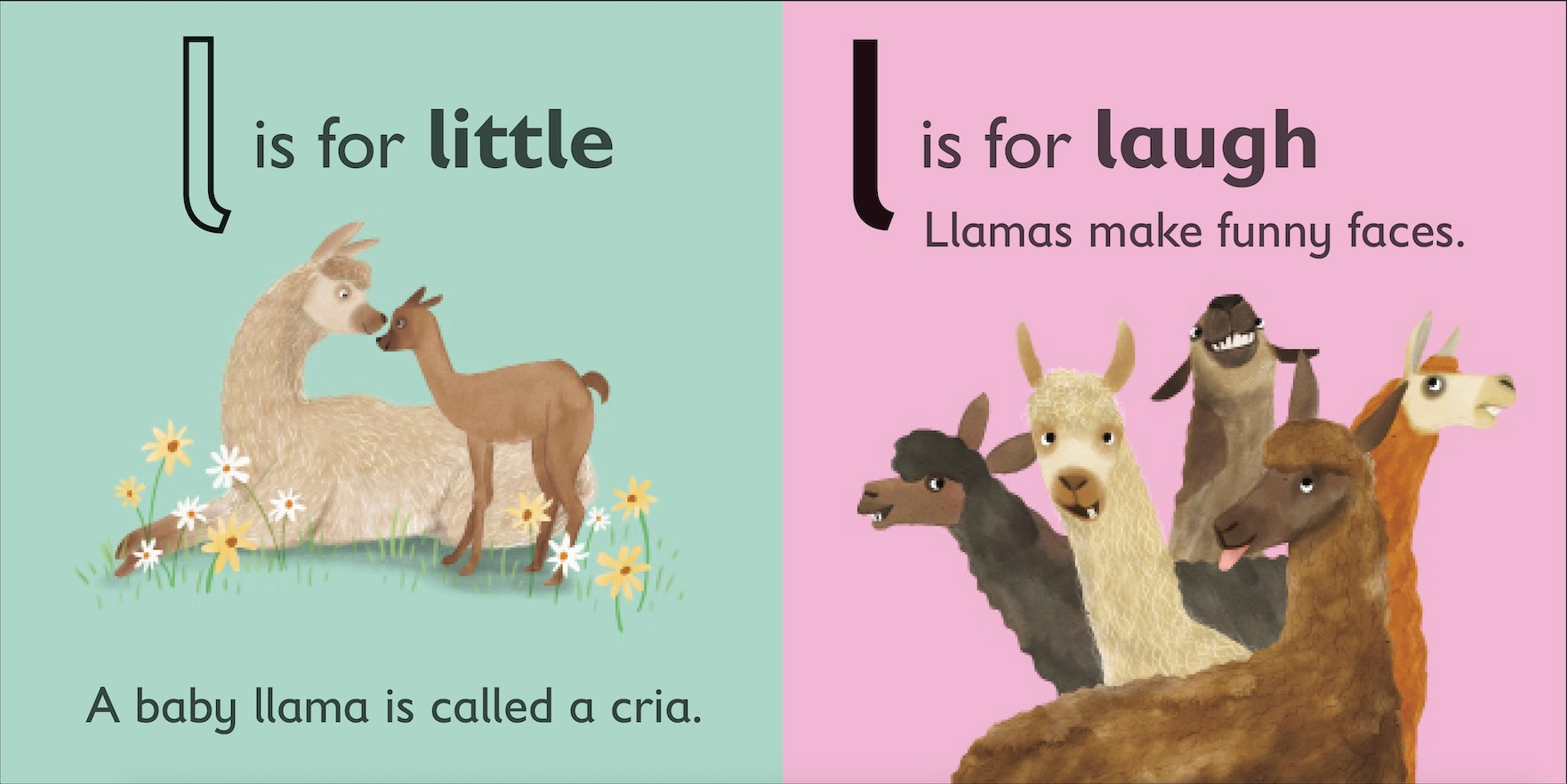 L is for Llama inside spread