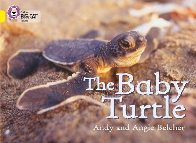 The Baby Turtle: Band 03/Yellow