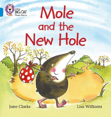 Mole and the New Hole: Band 04/Blue
