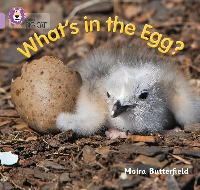 What's in the Egg?: Band 00/Lilac
