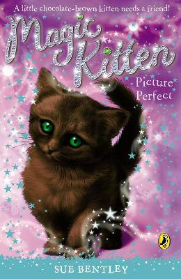Magic Kitten: Picture Perfect