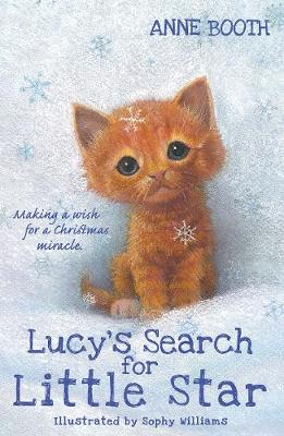 Book Reviews for Lucy's Search for Little Star By Anne Booth