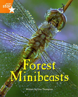 Fantastic Forest Orange Level Non-Fiction: Forest Minibeasts