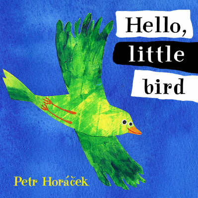 Hello Little Bird Board Book