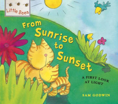Little Bees: From Sunrise to Sunset: A first look at light