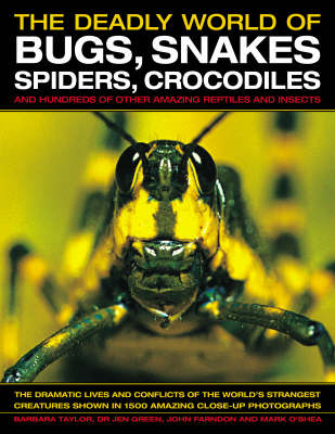 The Deadly World of Bugs, Snakes, Spiders, Crocodiles and Hundreds of Other Amazing Reptiles and Insects: Discover the Amazing World of Reptiles and Bugs, Featuring More Than 1500 Fabulous Wildlife Photographs and Illustrations