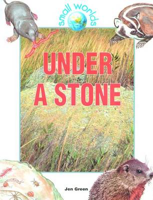 Under a Stone