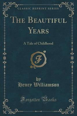 The Beautiful Years: A Tale of Childhood (Classic Reprint)