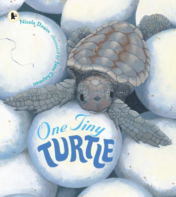 One Tiny Turtle Pbk With Cd