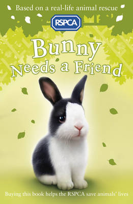 Bunny Needs a Friend