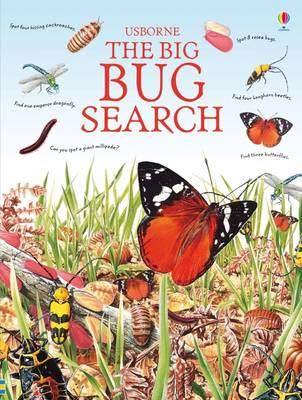 The Big Bug Search