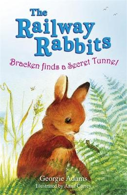 Bracken Finds a Secret Tunnel: Book 5