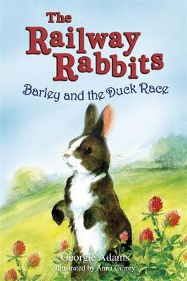 Railway Rabbits: Barley and the Duck Race: Book 9