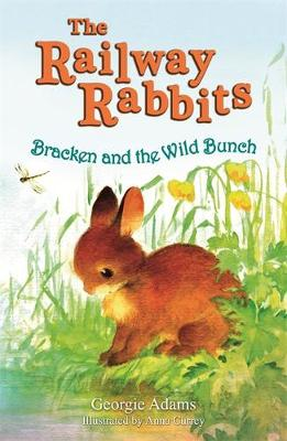 Railway Rabbits: Bracken and the Wild Bunch: Book 11