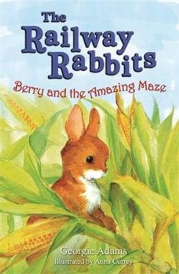 Berry and the Amazing Maze: Book 12