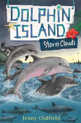 Dolphin Island: Storm Clouds: Book 6