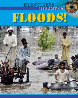 Eyewitness Disaster: Floods!