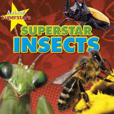 Insect Superstars