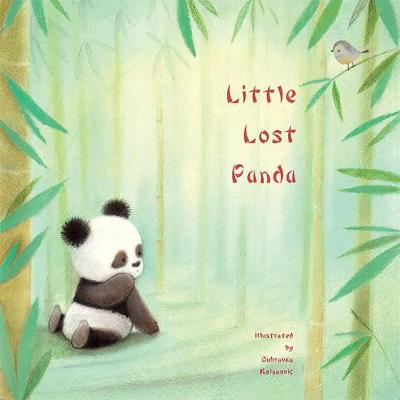Little Lost Panda