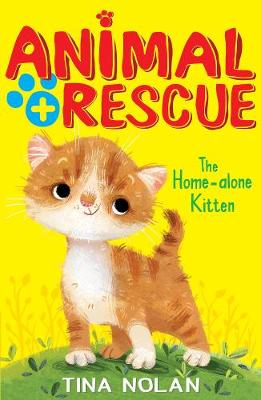 The Home-alone Kitten