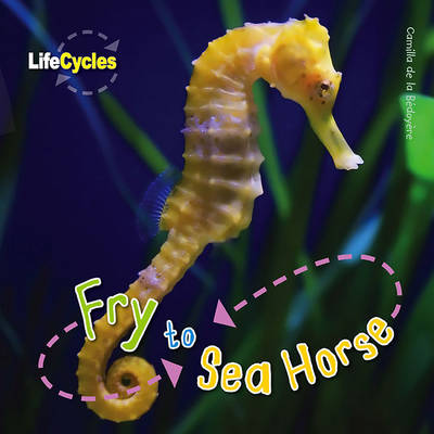 Life Cycles: Fry to Seahorse