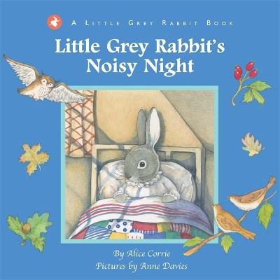 Little Grey Rabbit's Noisy Night