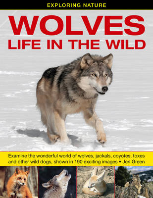 Exploring Nature: Wolves - Life in the Wild: Examine the Wonderful World of Wolves, Jackals, Coyotes, Foxes and Other Wild Dogs, Shown in 190 Exciting Images