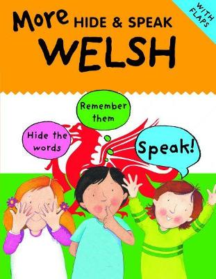 More Hide and Speak Welsh