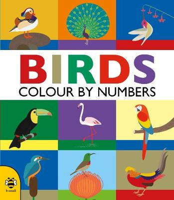 Birds (Colour by Numbers)