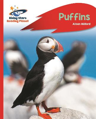 Reading Planet - Puffins - Red A: Rocket Phonics