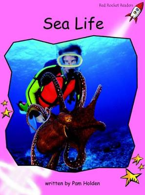 Red Rocket Readers: Pre-Reading Non-Fiction Set A: Sea Life