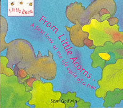 Little Bees: From Little Acorns...: A first look at the life cycle of a tree