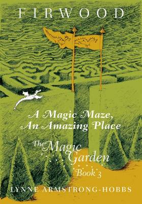 A Magic Maze, An Amazing Place