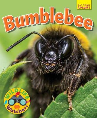 Wildlife Watchers: Bumblebee