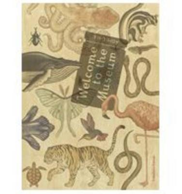 Welcome to the Museum: Animalium Collector's Edition