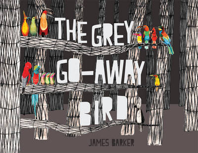 The Grey Go-Away Bird
