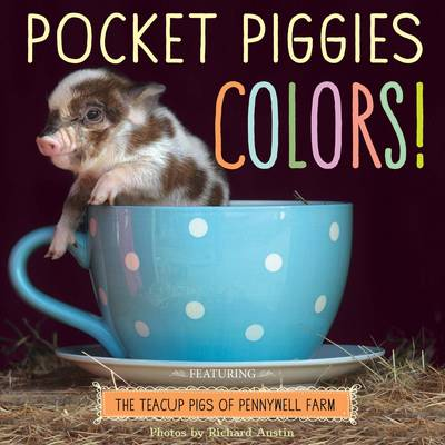 Pocket Piggies Colours!