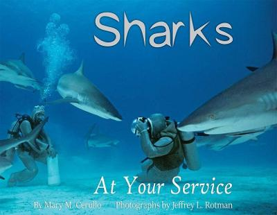 Sharks at Your Service