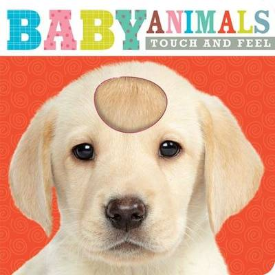 Baby Animals: Touch and Feel