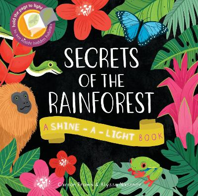 Secrets of the Rainforest: A shine-a-light book