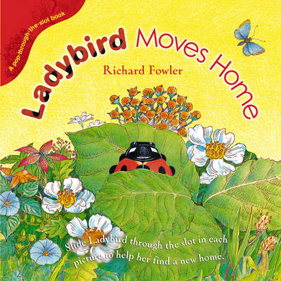 Ladybird Moves Home