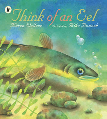 Think Of An Eel Library Edition