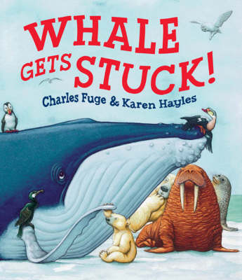 Whale Gets Stuck