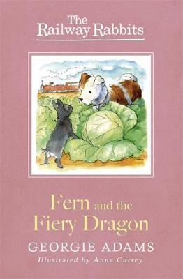 Railway Rabbits: Fern and the Fiery Dragon: Book 7