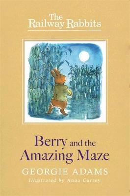 Railway Rabbits: Berry and the Amazing Maze: Book 12