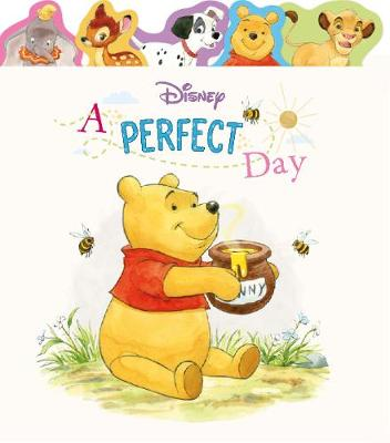 Disney A Perfect Day