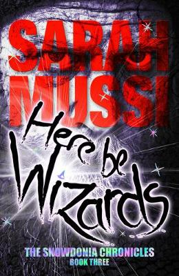 Here be Wizards: The Snowdonia Chronicles: book three