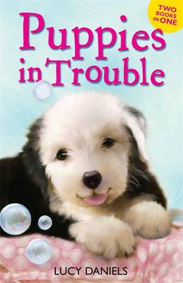 Animal Ark: Puppies in Trouble: Puppies in the Pantry & Puppy in a Puddle