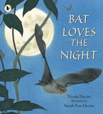 Bat Loves The Night Library Edition