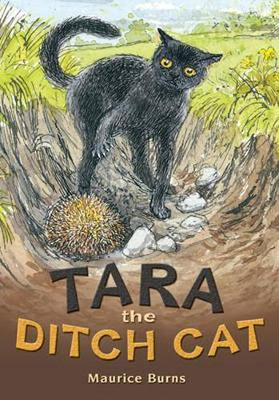 POCKET TALES YEAR 4 TARA THE DITCH CAT